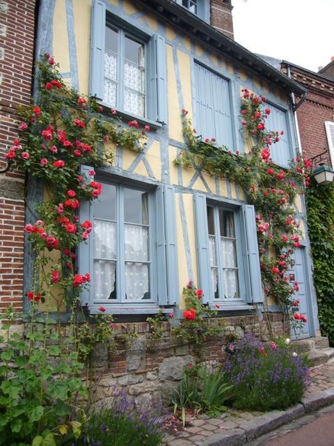 バラの咲く、青い窓枠の家がいっぱい