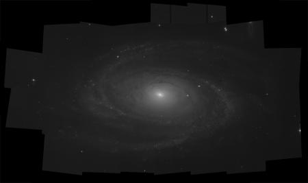 M81_B_1000.jpg