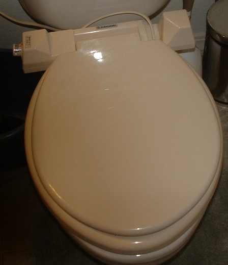 toiletbowl.jpg