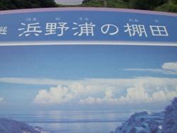 9月26日棚田3