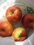 リンゴ11月1日