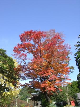 11月23日英彦山
