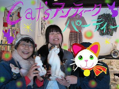 三毛猫3ショット