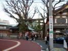 湯島天神201001