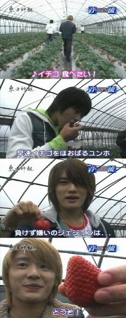 onryu-ichigo1.jpg