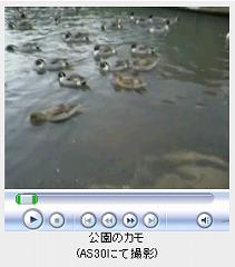 20041225151500.jpg