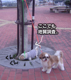 20070312kouen2.jpg