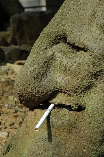 smoker001.jpg