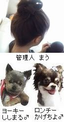 shishikage