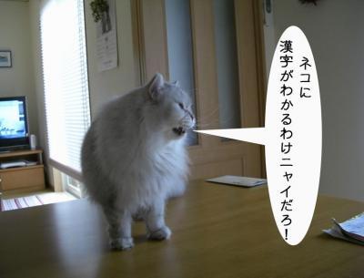 漢字わからん4