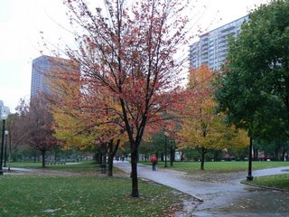 boston autumn