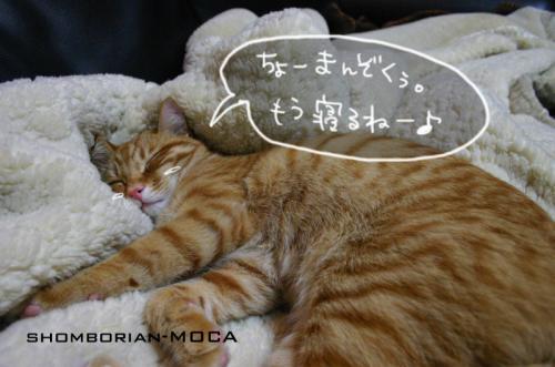 ちょっと寝るわ~♪