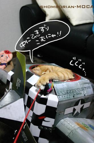 ひきずりこむのにゃ~!!!!
