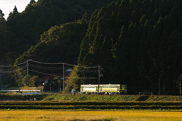 nisiooharasyakou