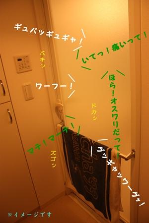 200809252.jpg