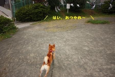 200810144.jpg