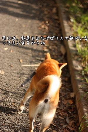 200810311.jpg