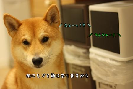 200811016.jpg
