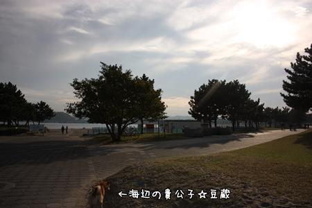 200811024.jpg