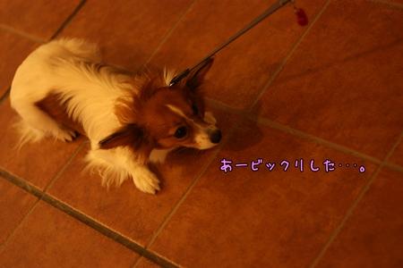 200811047.jpg