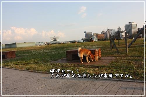 200811132.jpg