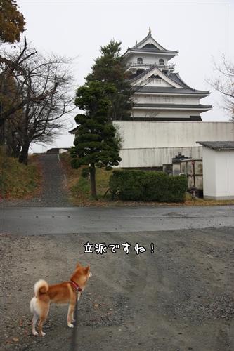 200811203.jpg