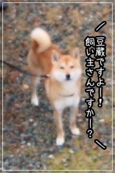200811206.jpg