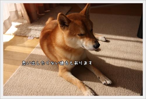 200811232+.jpg