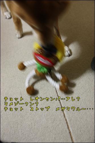 200811276.jpg