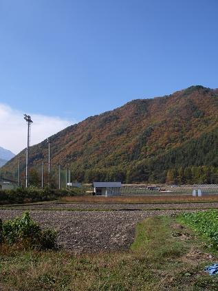 裏山(2008年11月2日)