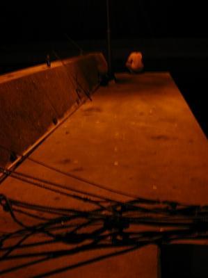 2008/08/11生里釣りバカ4