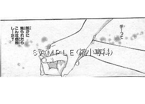 t_119-10.jpg