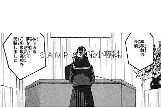 t_166-04.jpg