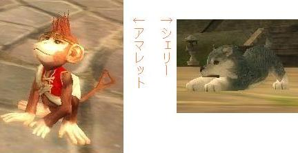 20060508s.jpg