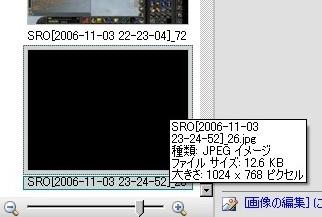 20061103t5.jpg