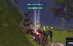 20070220142451.jpg