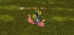 20070720093528.jpg