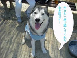 09.06愛ハス1