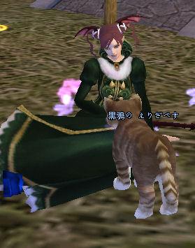 猫と戯れる貴婦人?