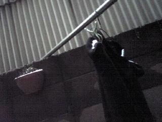 2008-2-9-3.jpg
