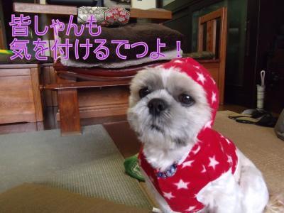 縺阪r_convert_20091214000348