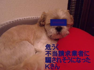 繝・ず繧ォ繝。+717_convert_20091214010941