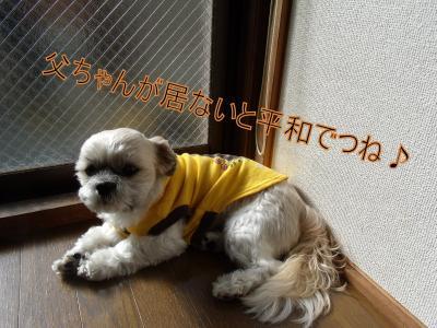繝・ず繧ォ繝。+1027_convert_20100106024806