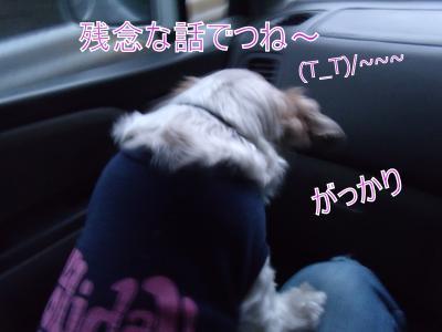 繝・ず繧ォ繝。+980_convert_20100107015946