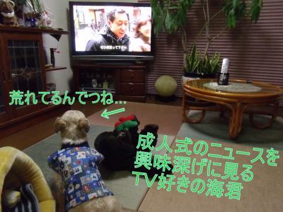 繝・ず繧ォ繝。+1118_convert_20100111185049