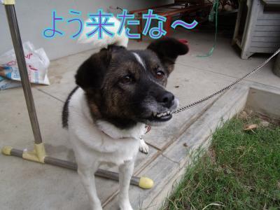 gokuaku.jpg