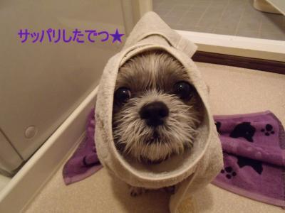 kaifuro1.jpg