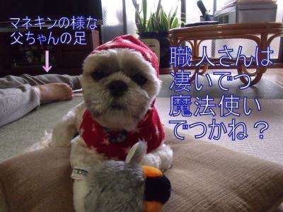 shouji3.jpg