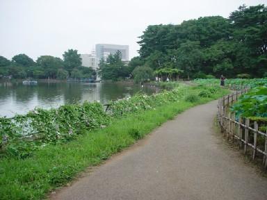 DSC01467.jpg