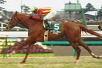 2006年 京成杯(GIII)